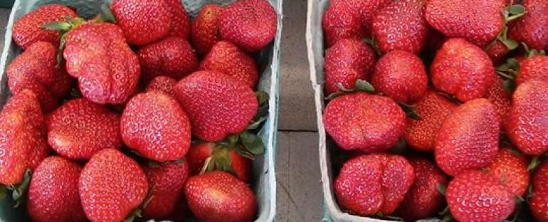 Strawberry Shortcake Anyone? Fresh Sweet Carolina Strawberries are in!